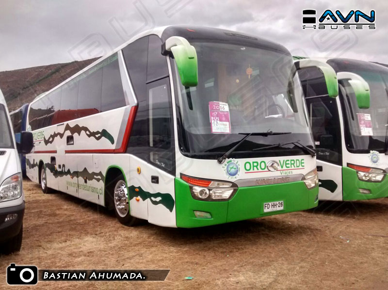 King Long XMQ6130Y / Turismo Oro Verde