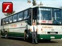 Ciferal Podium - Scania / Tur Bus
